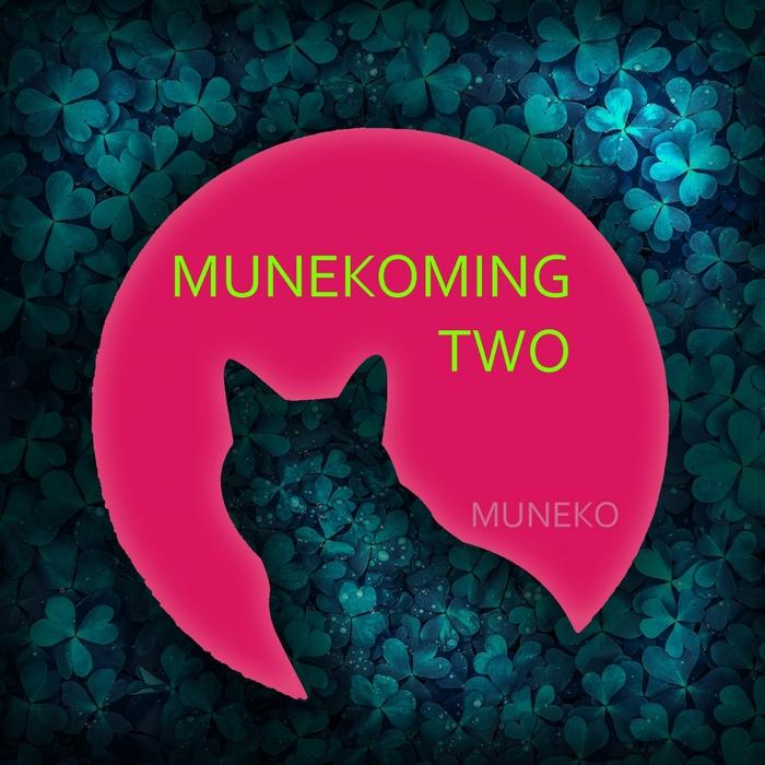 VARIOUS - Munekoming Hits 2