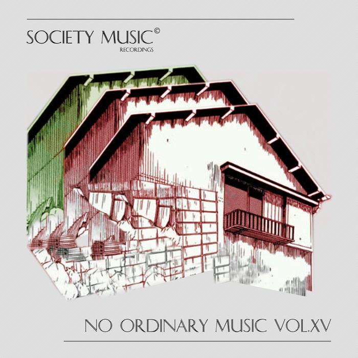 VARIOUS - No Ordinary Music Vol VX