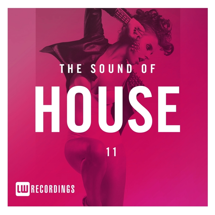 VARIOUS - The Sound Of House Vol 11