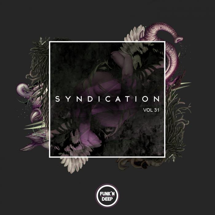 VARIOUS - Syndication Vol 31