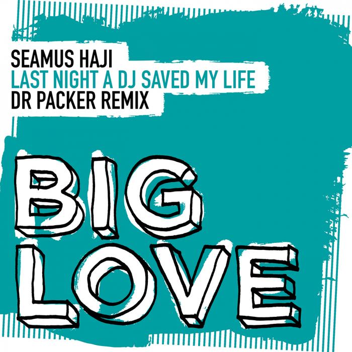 SEAMUS HAJI - Last Night A DJ Saved My Life
