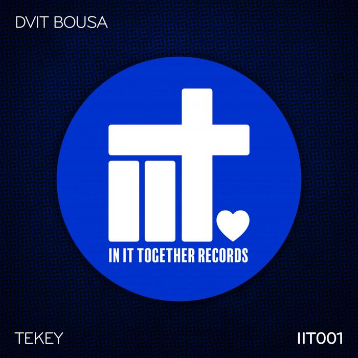 DVIT BOUSA - TeKey