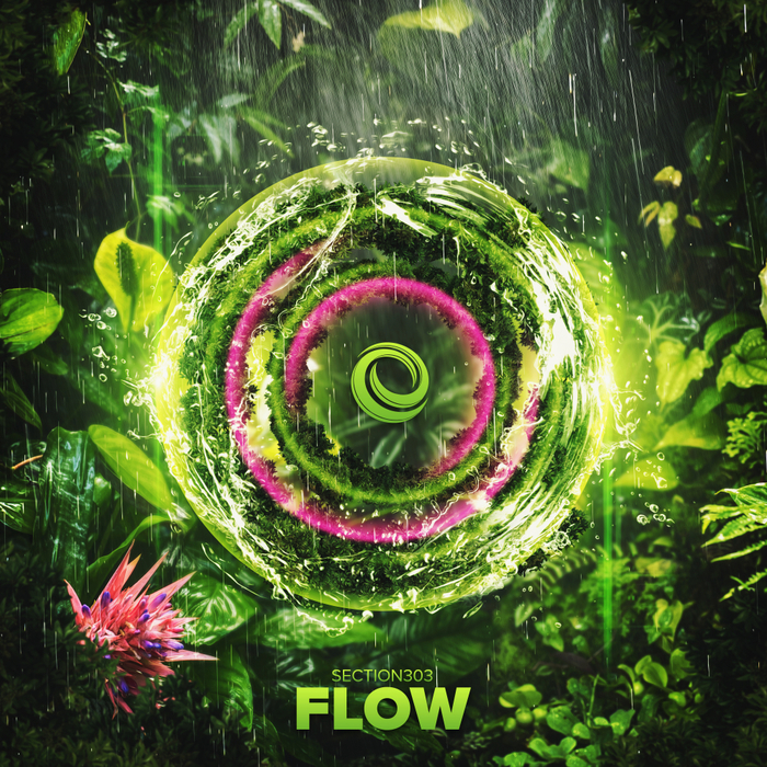 SECTION303 - Flow