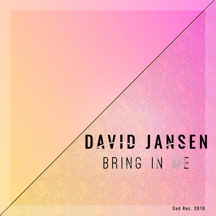DAVID JANSEN - Bring In Me