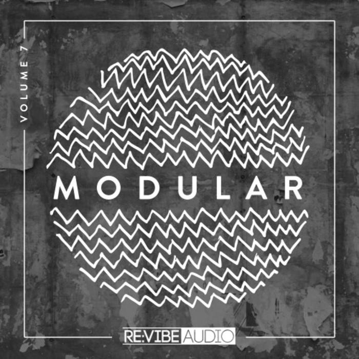 VARIOUS - Modular Vol 7