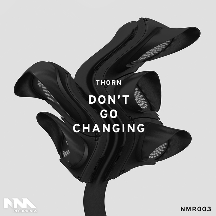THORN - Don't Go Changing