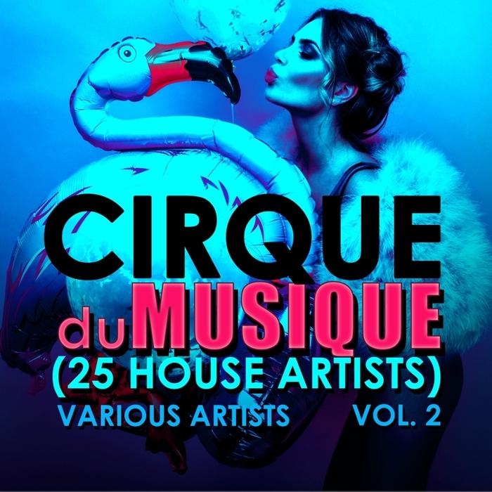 VARIOUS - Cirque Du Musique Vol 2 (25 House Artists)