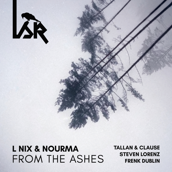 L NIX & NOURMA - From The Ashes