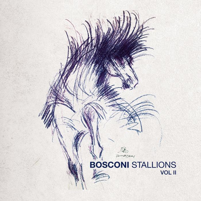 VARIOUS - Bosconi Stallions Vol 2 - 10 Years Of Bosconi Records