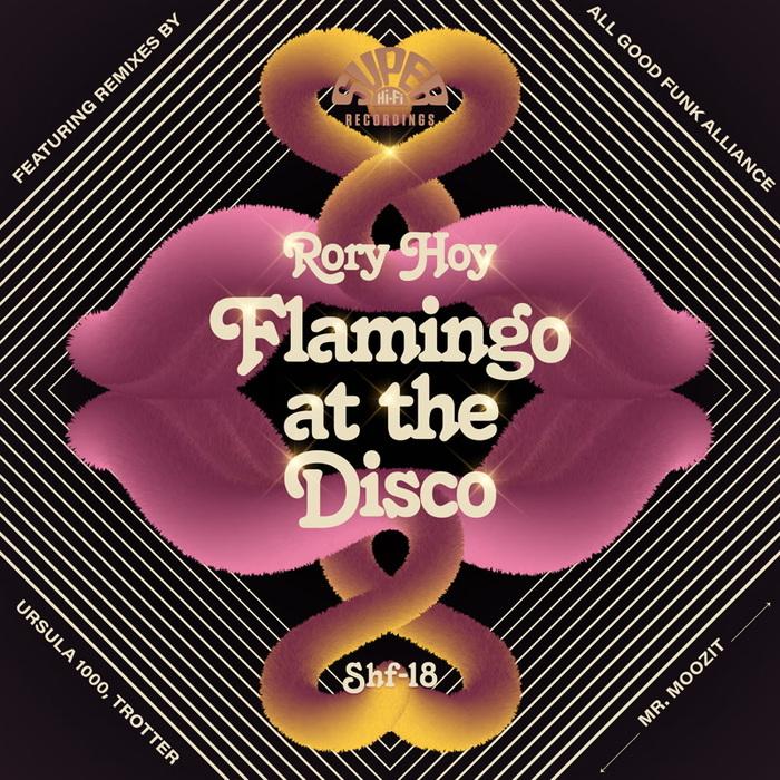 RORY HOY - Flamingo At The Disco