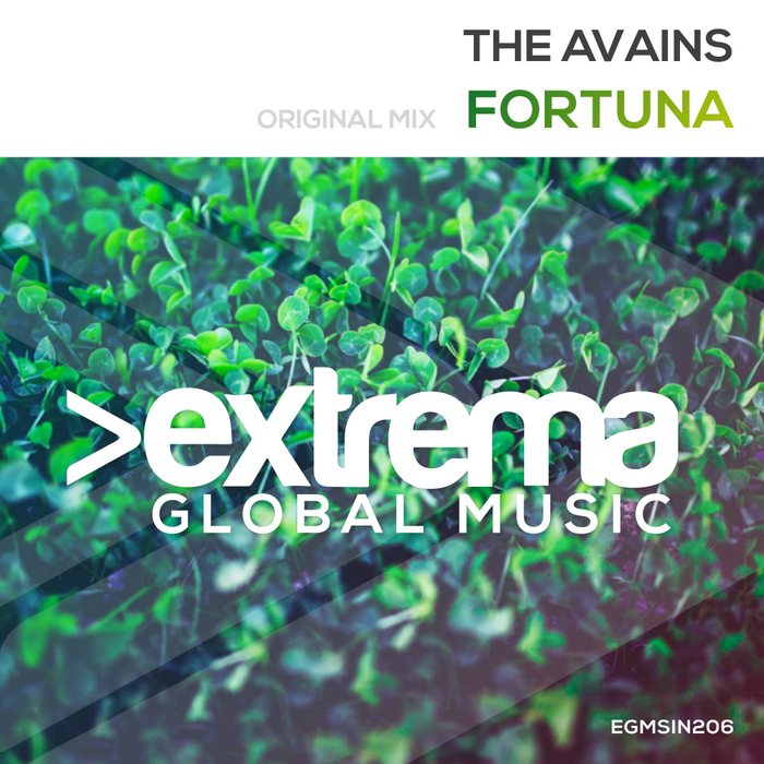 THE AVAINS - Fortuna