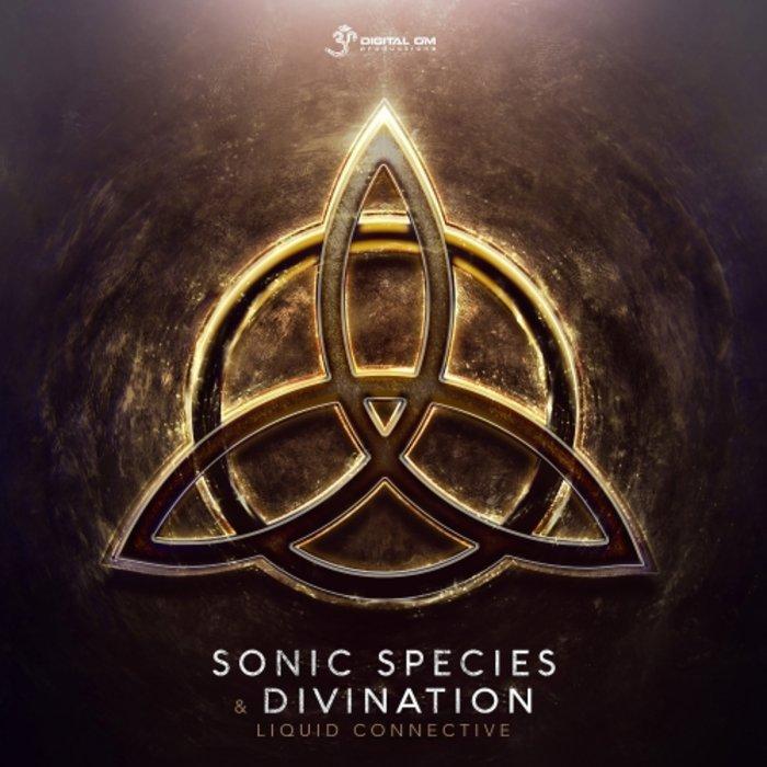 DIVINATION/SONIC SPECIES - Liquid Connective
