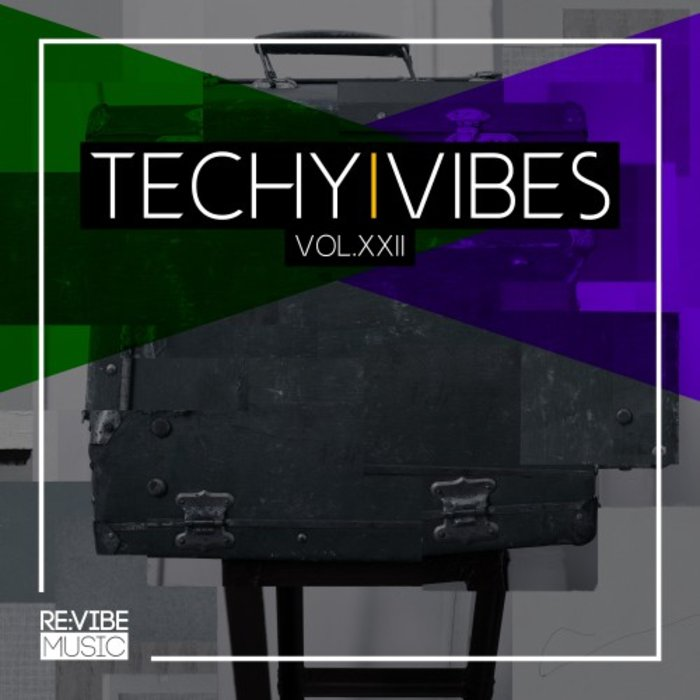 VARIOUS - Techy Vibes Vol 22