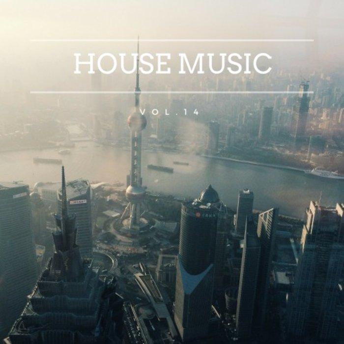 VARIOUS - House Music Vol 14