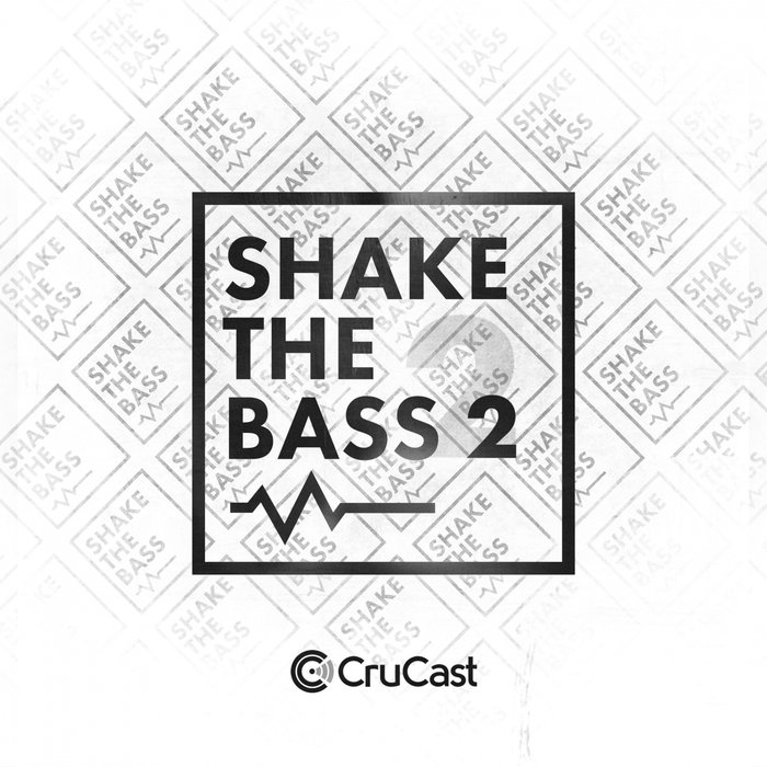 VARIOUS - Shake The Bass 2