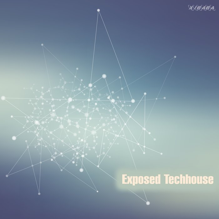 VARIOUS - Exposed Techhouse