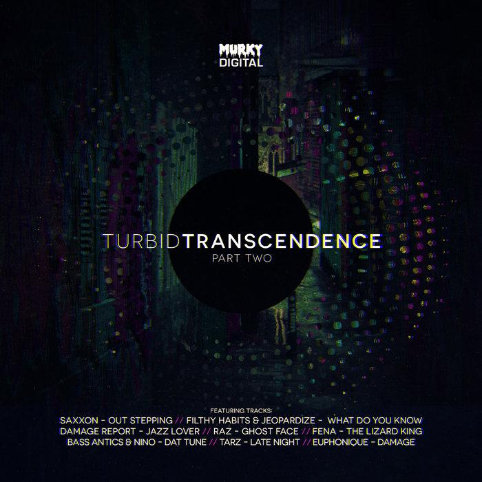 VARIOUS - Turbid Transcendence (Part Two)
