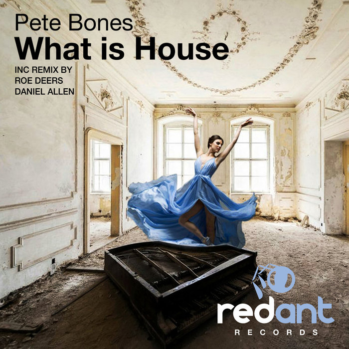 PETE BONES - What Is House