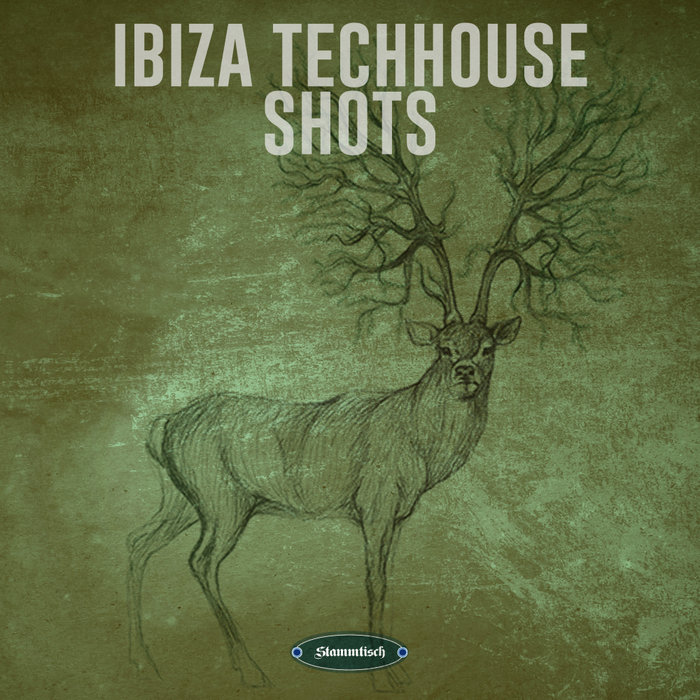 VARIOUS - Ibiza Techhouse Shots