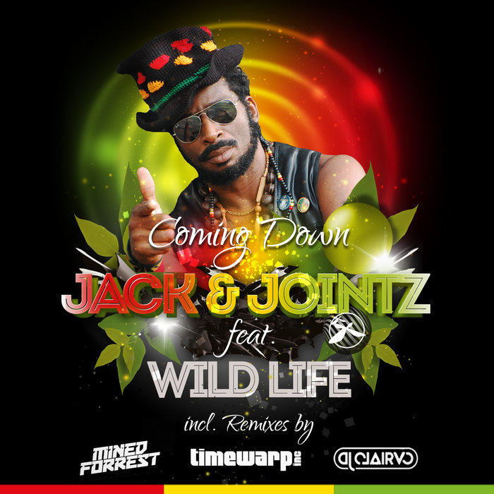 JACK & JOINTZ feat WILD LIFE - Coming Down