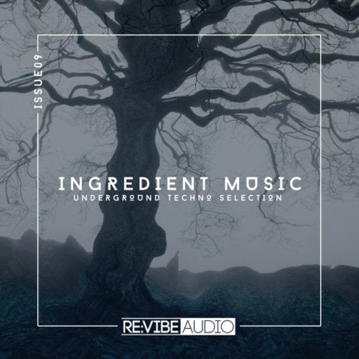 VARIOUS - Ingredient Music Vol 9
