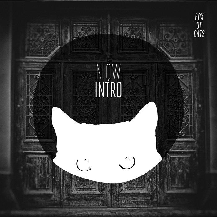 NIQW - Intro