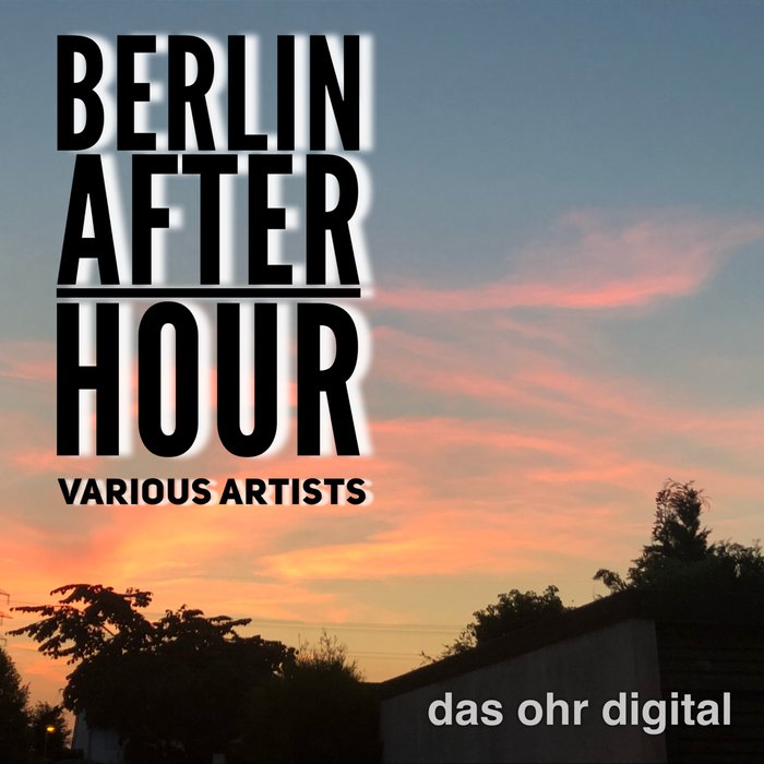 VARIOUS - Berlin After Hour