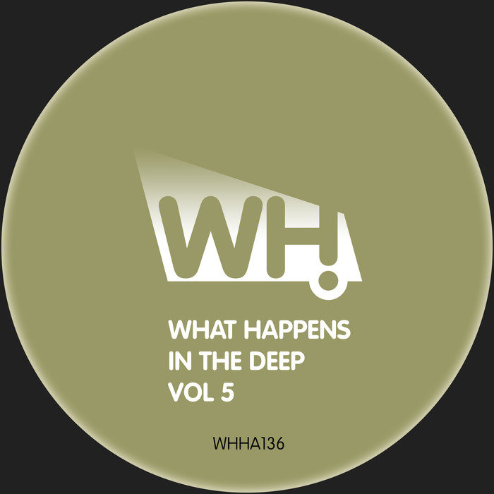 VARIOUS - What Happens In The Deep Vol 5