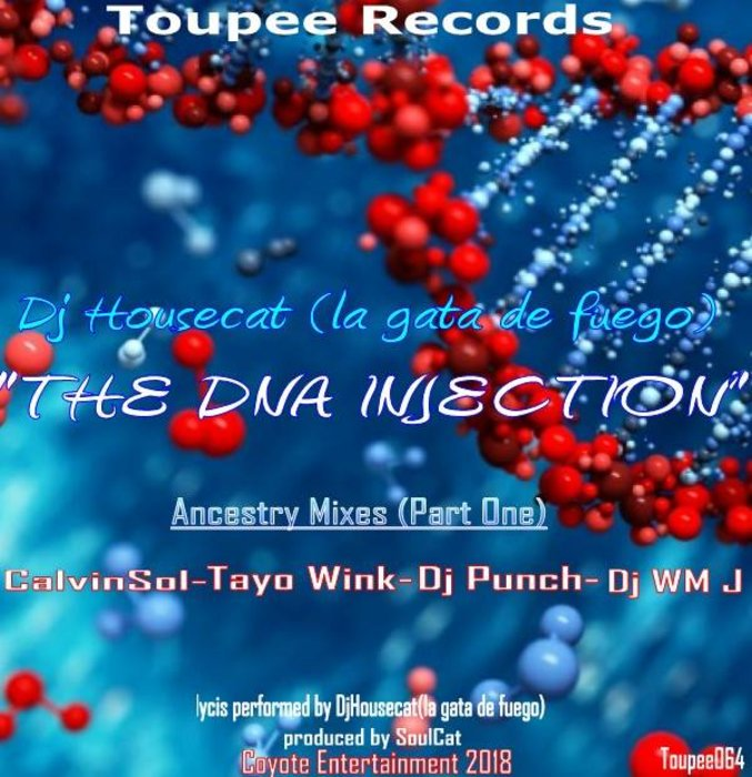DJHOUSECAT(LA GATA DE FUEGO) - The DNA Injection