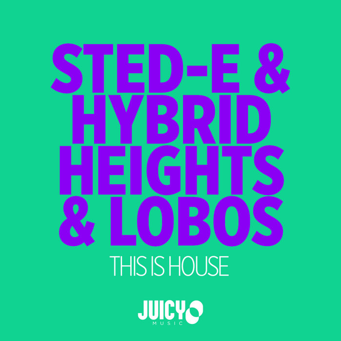 STED-E & HYBRID HEIGHTS/LOBOS - This Is House