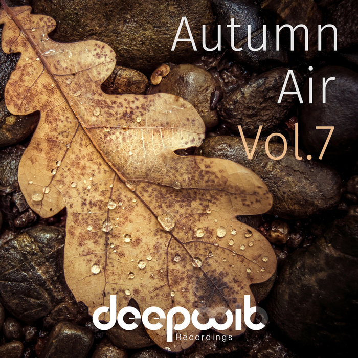 VARIOUS - Autumn Air Vol 7