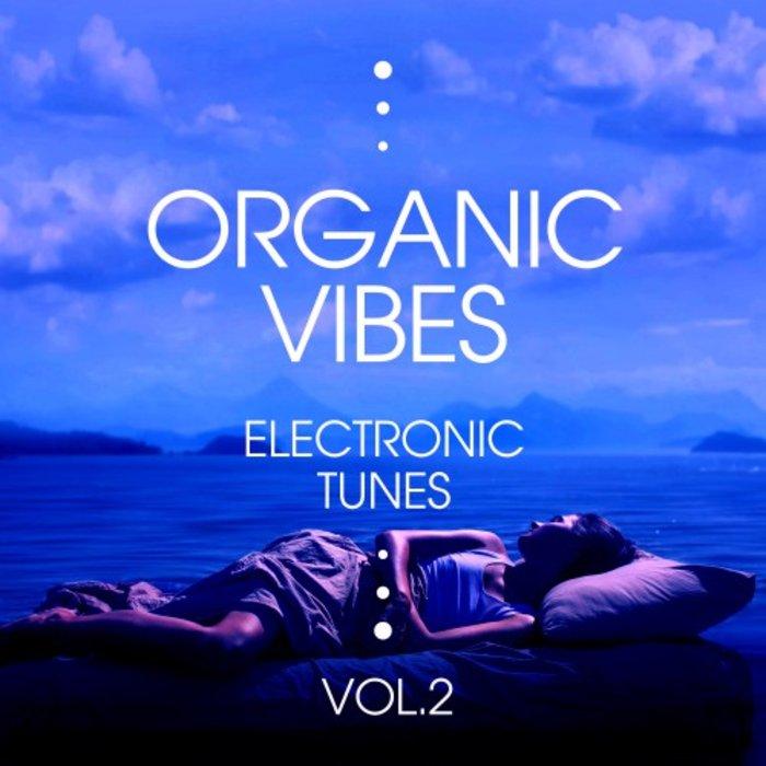 VARIOUS - Organic Vibes (Electronic Tunes) Vol 2