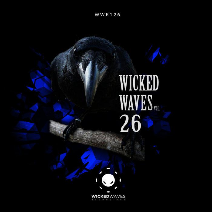 VARIOUS - Wicked Waves Vol 26