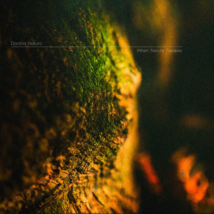 DOCTRINA NATURA - When Nature Awakes