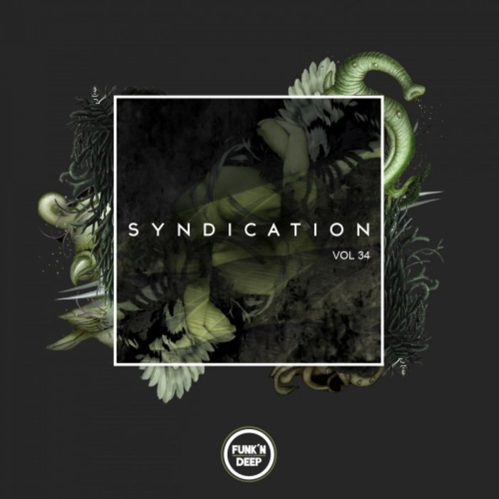 VARIOUS - Syndication Vol 34