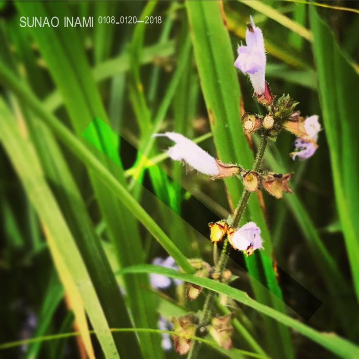 SUNAO INAMI - 0108-0120_2018
