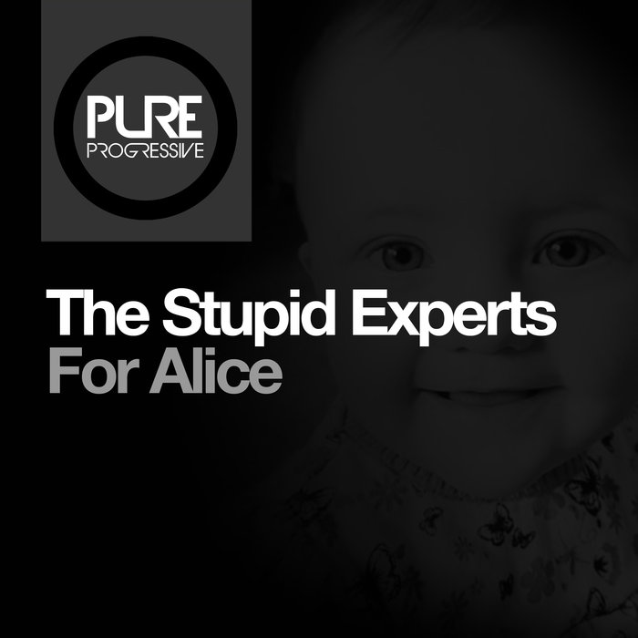 THE STUPID EXPERTS - For Alice