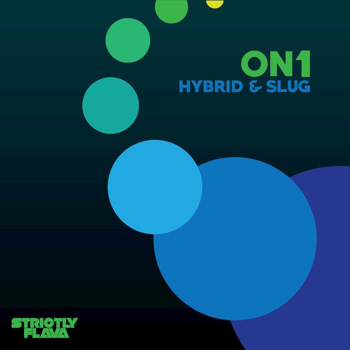 ON1 - Hybrid & Slug
