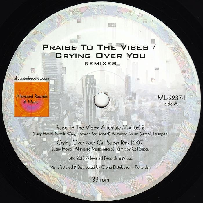 MR FINGERS - Praise To The Vibes/Crying Over You Remixes