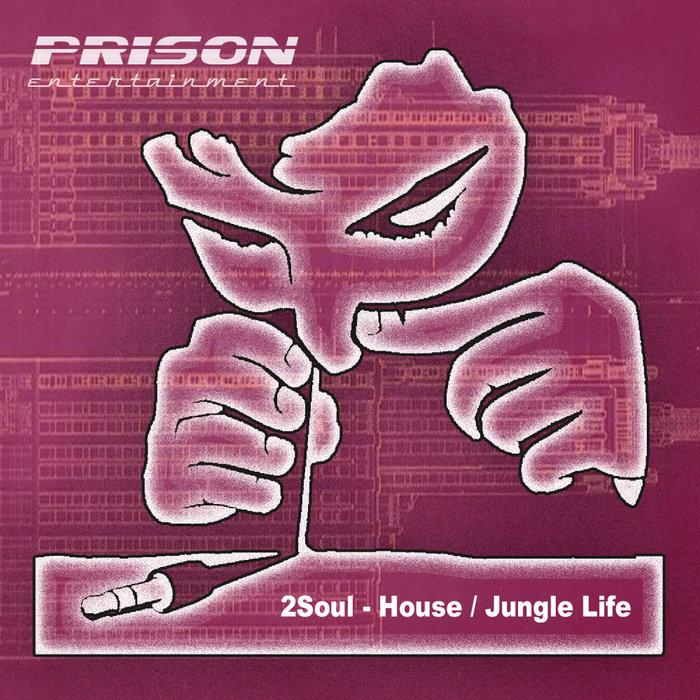 2SOUL - House/Jungle Life