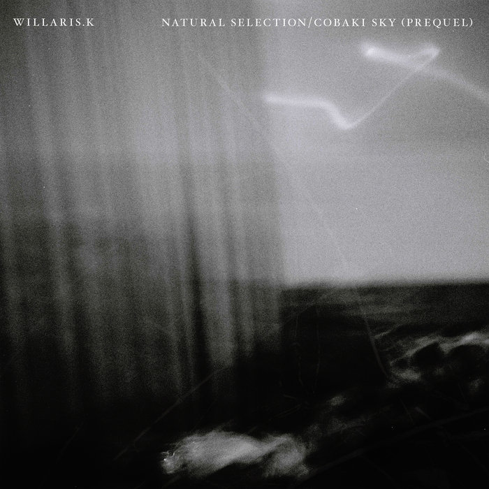 WILLARIS K - Natural Selection/Cobaki Sky (Prequel)