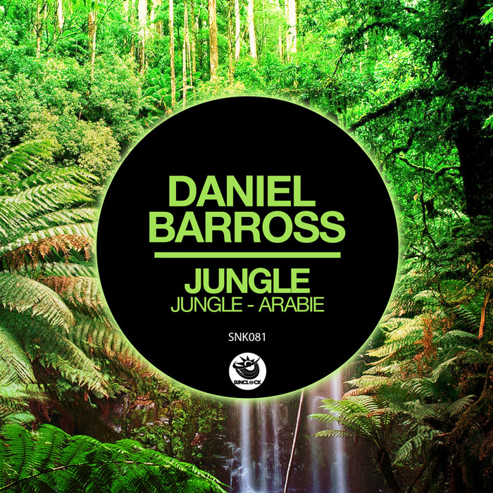 DANIEL BARROSS - Jungle