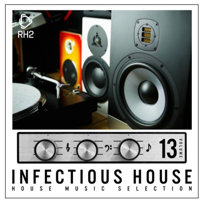 VARIOUS - Infectious House Vol 13