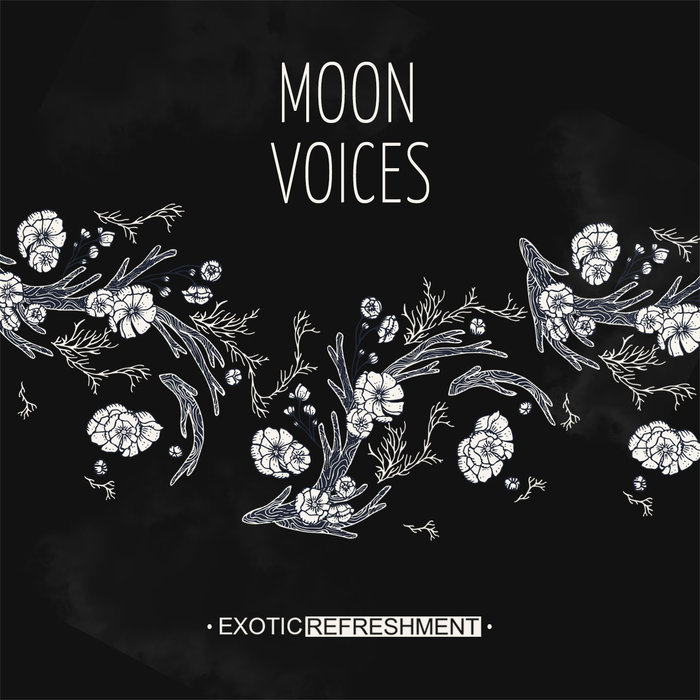 VARIOUS - Moon Voices