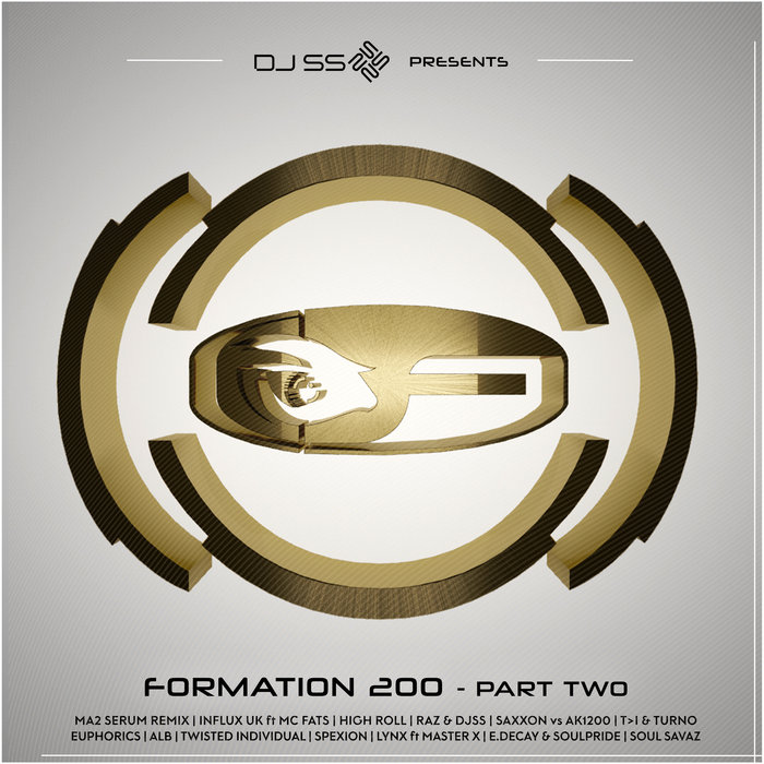 VARIOUS - DJ SS Presents: Formation 200 Pt 2