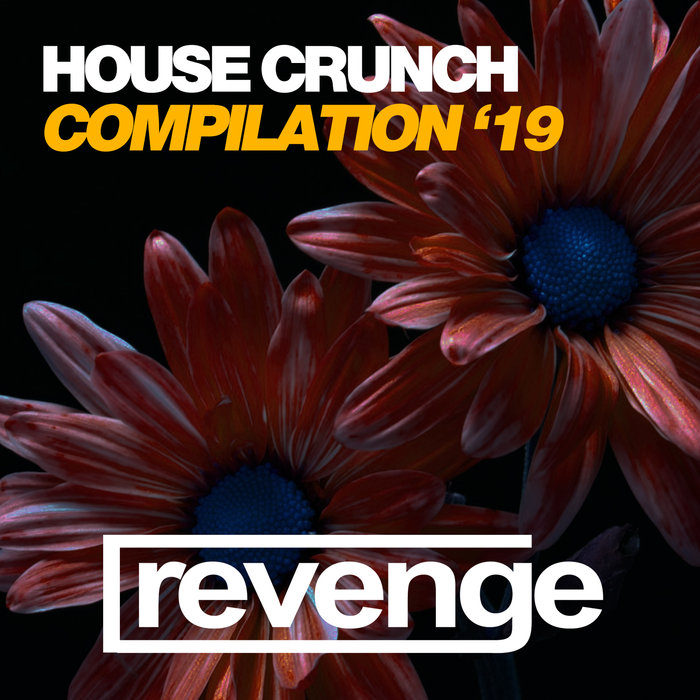 VARIOUS - House Crunch '19