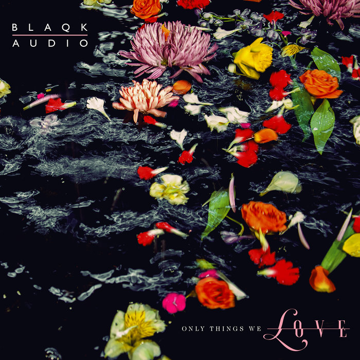BLAQK AUDIO - The Viles