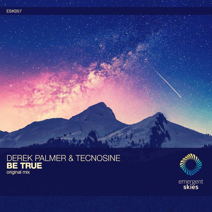 DEREK PALMER/TECNOSINE - Be True