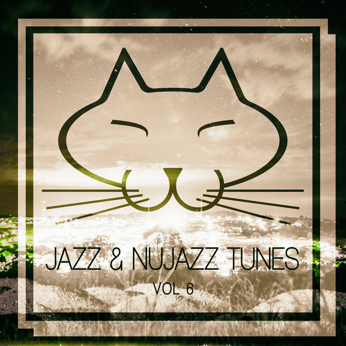 VARIOUS - Jazz & Nujazz Tunes Vol 6