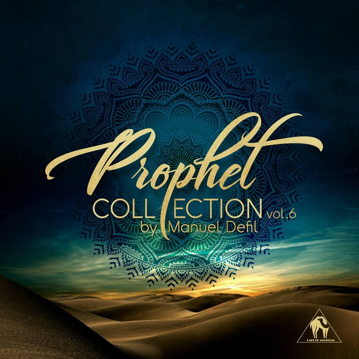 VARIOUS - Prophet Collection Vol 6